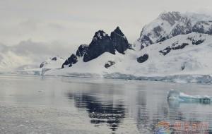 【南极半岛图片】《行摄南极》第10篇:繁衍在丹克岛上的——金图企鹅家族
