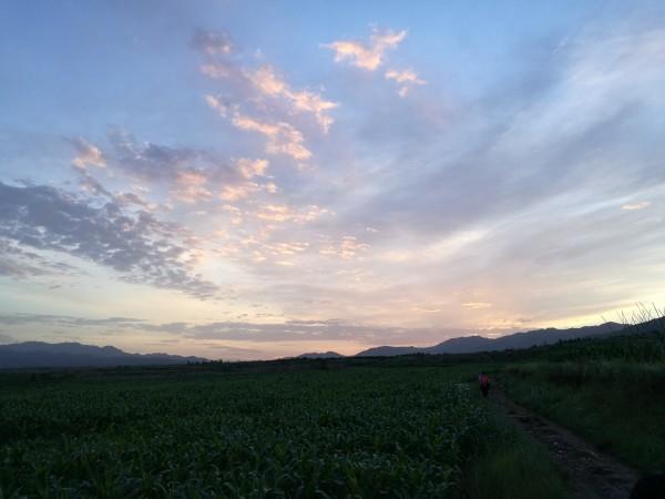 重装茶山——惊艳的偶遇