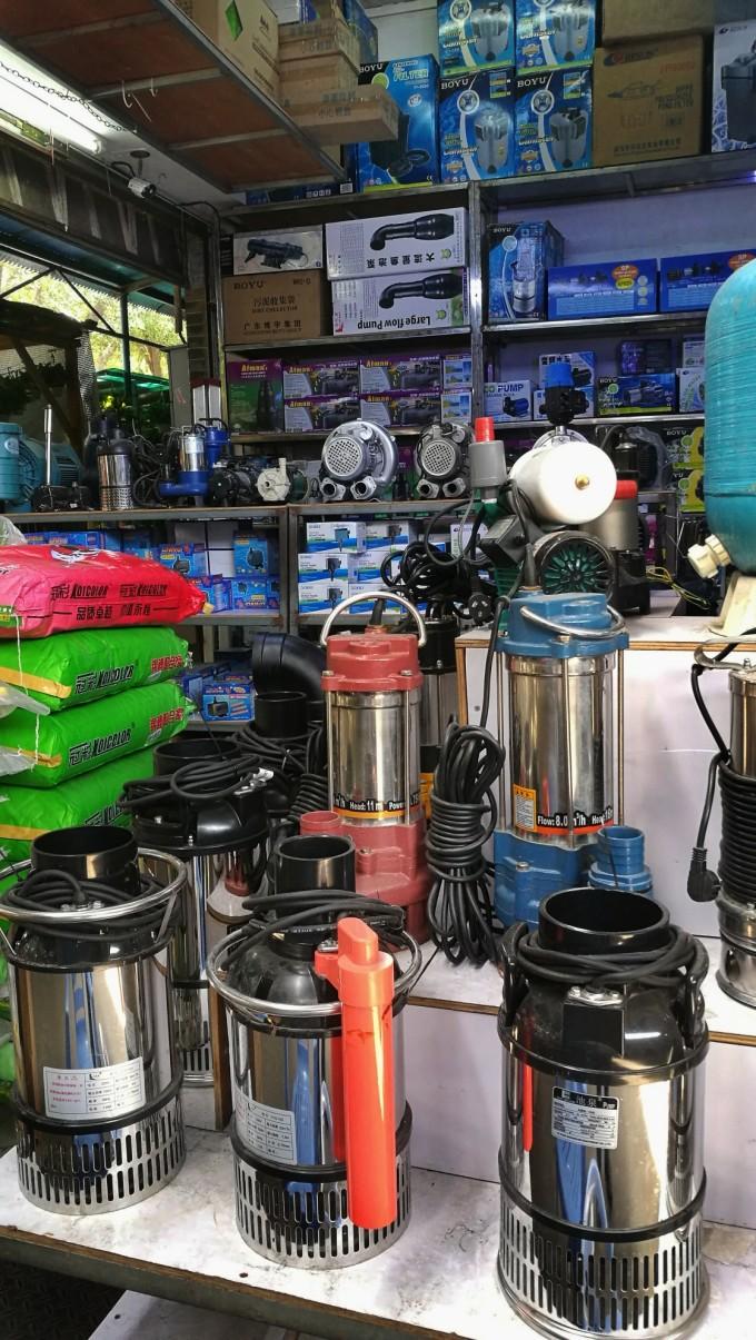 广州花鸟鱼虫批发市场,包罗万象,无奇不有