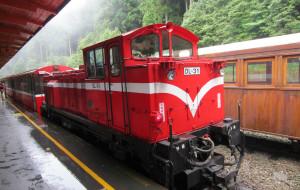 台湾娱乐-阿里山小火车