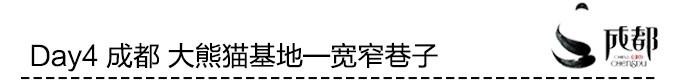 Day4 成都 大熊猫基地—宽窄巷子