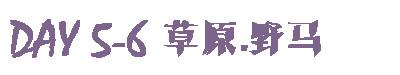 游记 | DAY5-6 草原.野马