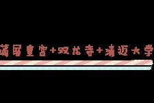 蒲屏皇宫+双龙寺+清迈大学