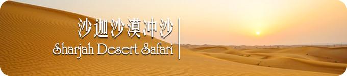 沙迦沙漠冲沙