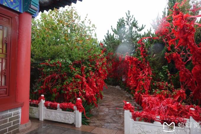 金秋收获季 风景 海鲜 水果 山东五城自驾游图片